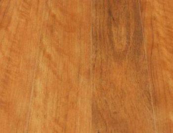 Brushbox Timber