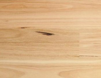 G5 Blackbutt Timber